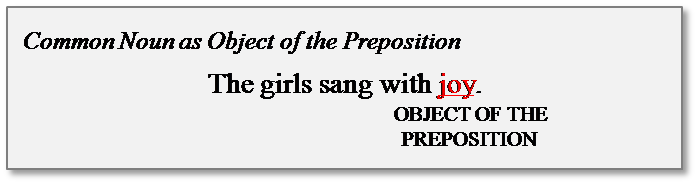common noun object of the preposition